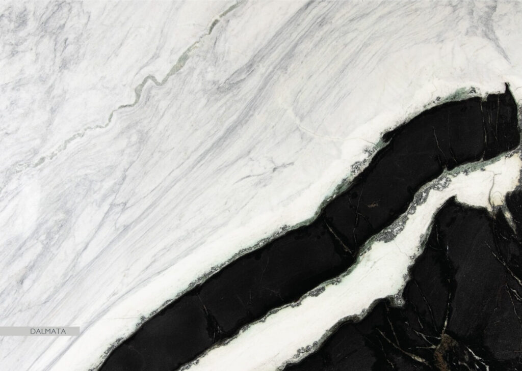 The Quarry Curated Dalmata Marble -Best marble manufacturer in India